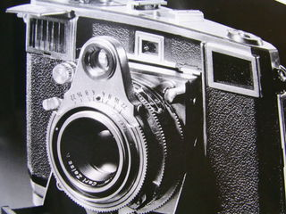 RIMG2866.JPG